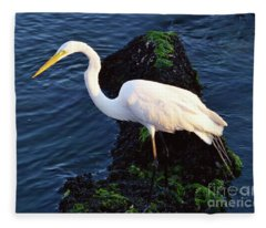 White Egret At Sunrise - Barnegat Bay Nj  Fleece Blanket