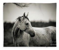 White Horse Autumn Portrait Fleece Blanket