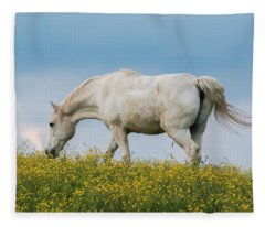 White Horse Of Cataloochee Ranch 2 - May 30 2017 Fleece Blanket
