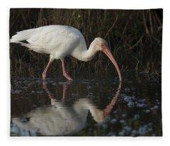 White Ibis Feeding In Morning Light Fleece Blanket
