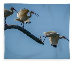 White Ibis Takeoff Fleece Blanket