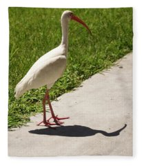 White Ibis Walking Down The Street Fleece Blanket