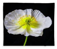 White Iceland Poppy Fleece Blanket