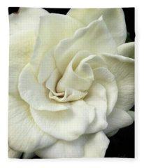 White Knight Fleece Blanket