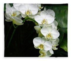 White Moth Orchid Array Fleece Blanket
