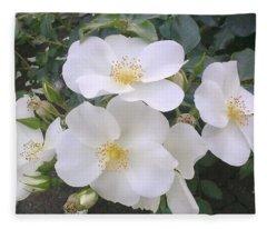 White Roses Bloom Fleece Blanket