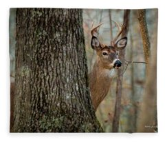 Whitetail #31 Fleece Blanket