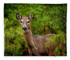 Whitetail In The Pines Fleece Blanket