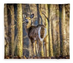 Whitetail Winter Morning Fleece Blanket