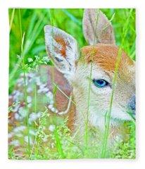 Whitetailed Deer Fawn Fleece Blanket