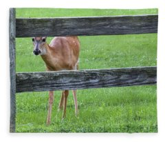 Who's Looking 2 - Fleece Blanket