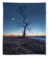 Wicked Tree Fleece Blanket