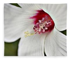 Wild Hibiscus Moscheutos_2a Fleece Blanket