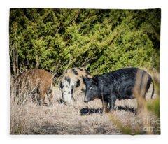 Wild Hogs Fleece Blanket