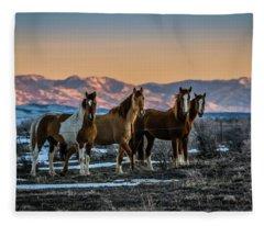Wild Horse Group Fleece Blanket