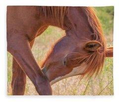 Wild Horse Nose Scratch Fleece Blanket