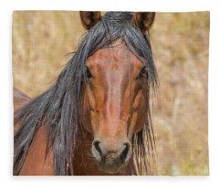 Wild Horse Portrait Fleece Blanket