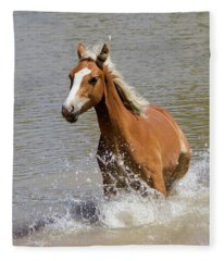 Wild Horse Splashing At The Water Hole Fleece Blanket