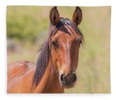 Wild Horse Stare Fleece Blanket