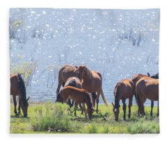 Wild Horses At Washoe Lake Fleece Blanket