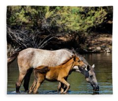 Wild Horses On The Salt River Fleece Blanket