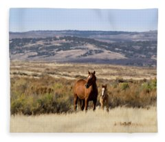 Wild Mare With Young Foal In Sand Wash Basin Fleece Blanket
