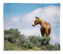 Wild Mustang Stallion Of Sand Wash Basin Fleece Blanket