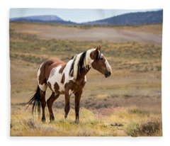 Wild Mustang Stallion Picasso Of Sand Wash Basin Fleece Blanket