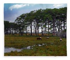 Wild Ponies Of Assateague Fleece Blanket