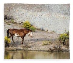 Wild Stallion Of Sand Wash Basin, Raindance Fleece Blanket