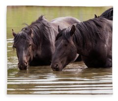 Wild Stallions At The Water Hole Fleece Blanket