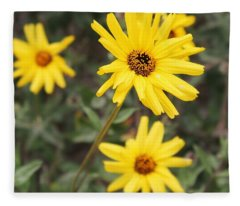 Wildflowers - Marina Del Rey Inlet Fleece Blanket
