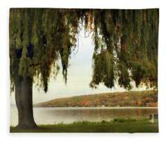 Willows Of Stewart Park Fleece Blanket