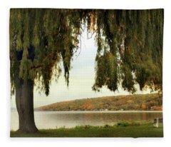 Willows Of Stewart Park Fleece Blanket