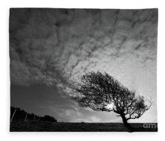 Windswept Blackthorn Tree In Winter Fleece Blanket
