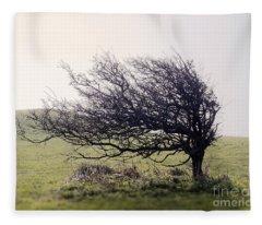 Windswept Tree Fleece Blanket