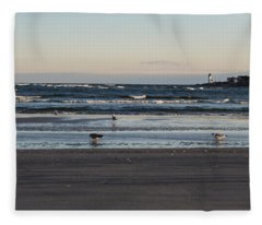 Wingaersheek Beach Seagulls At Sunrise Fleece Blanket