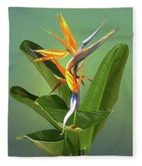 Wings Of Color Fleece Blanket