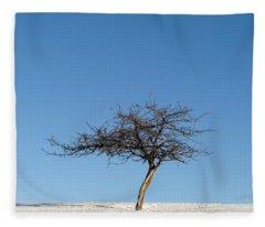 Winter At The Crabapple Tree Fleece Blanket