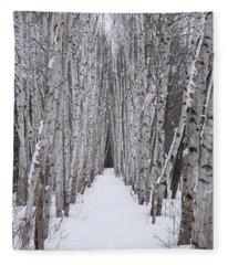 Winter Birch Path Fleece Blanket