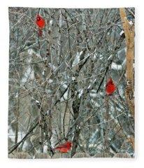Winter Cardinals Fleece Blanket