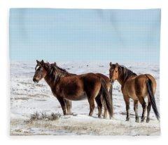Winter In Sand Wash Basin - Wild Mustangs Fleece Blanket