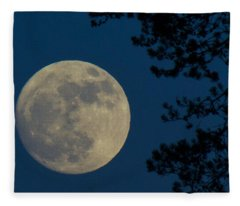 Winter Moon Fleece Blanket