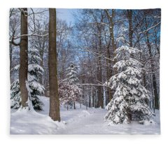 Winter Perfection Fleece Blanket