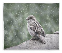 Winter Sparrow Fleece Blanket