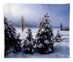 Winter Takes All Fleece Blanket