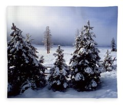 Winter Takes All Fleece Blanket