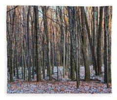 Winter - Uw Arboretum Madison Wisconsin Fleece Blanket