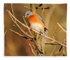 Winter's Bluebird  Fleece Blanket