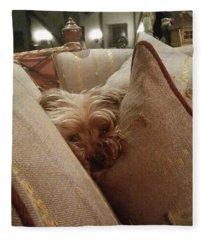 Cushioned Fleece Blanket